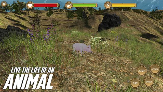 Pig Simulator HD Animal Life