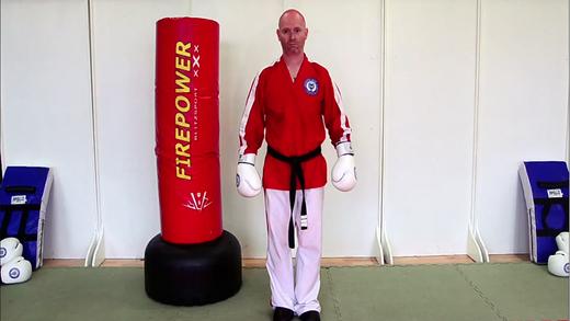 Purple White Belt Kick Jutsu