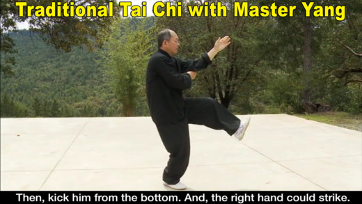 Yang Tai Chi for Beginners Part 2 3 Dr. Yang Jwing-Ming