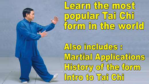 Tai Chi 24 48 Simplified Form