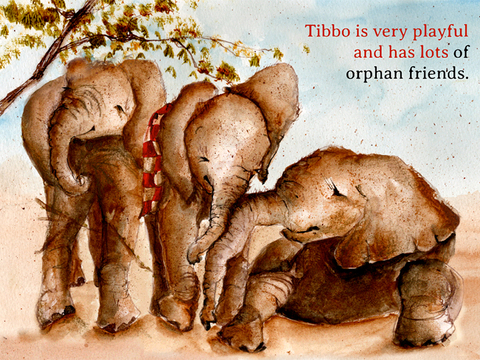 玩書籍App|Tibbo's Trunk免費|APP試玩