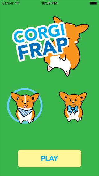 Corgi Frap