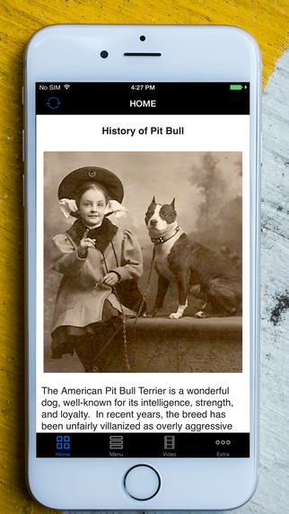 PitBulls As Pets - Limited Edition