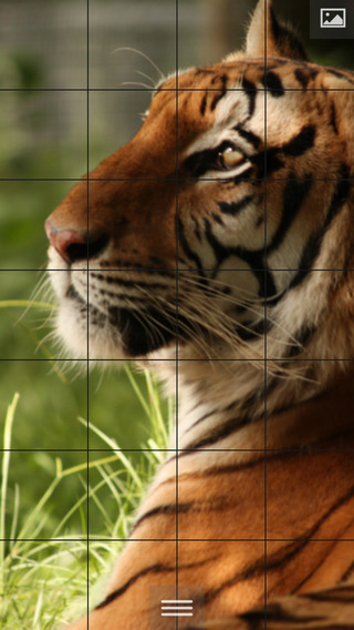 Puzzlemania Premium - Make your photos puzzles