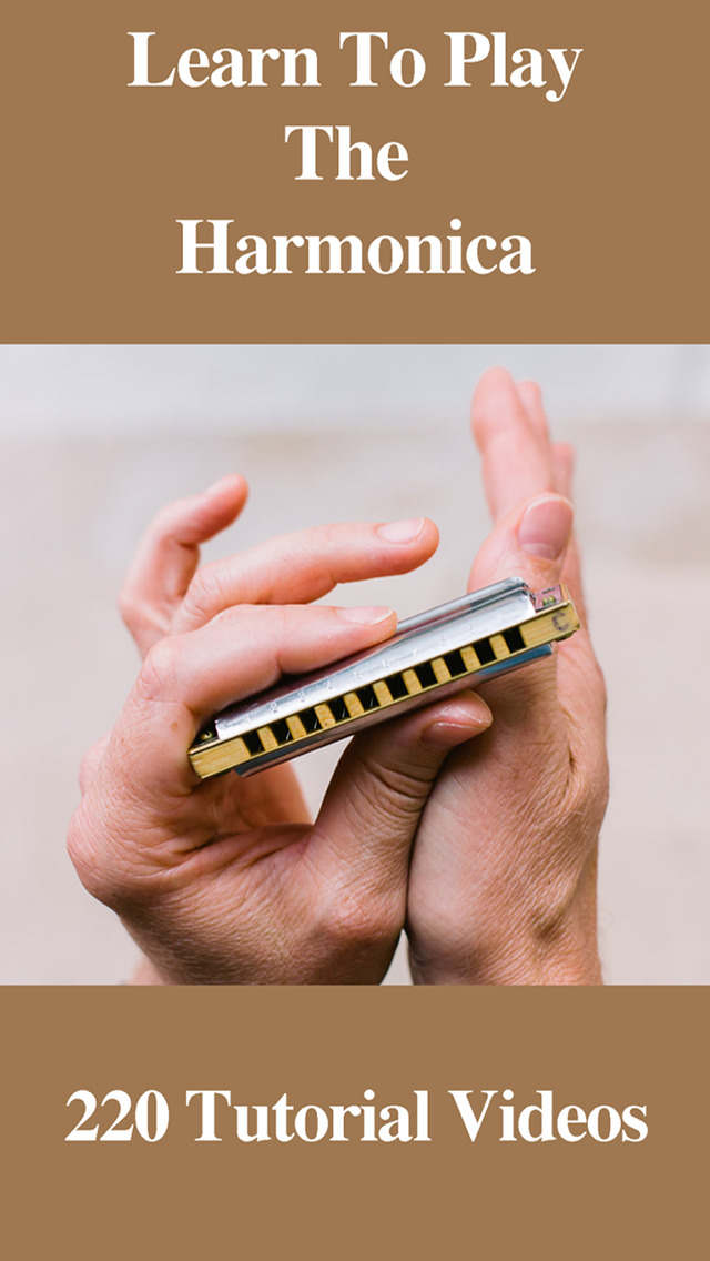Which Harmonica to Buy or Purchase to Get Started? Best ...