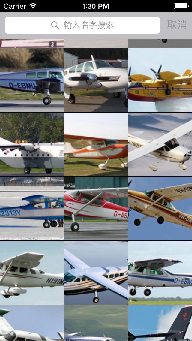 按驾驶员技术要求分:私人飞机