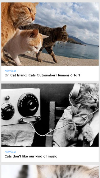 CATS: The App