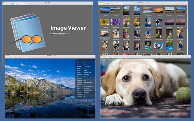 Image Viewer Screenshots