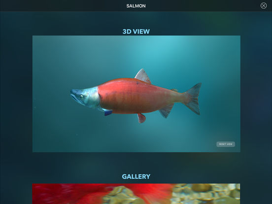 Amazing World OCEAN - Interactive 3D Encyclopedia Screenshots