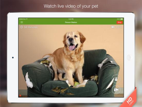 Screenshot #2 for Dog Monitor