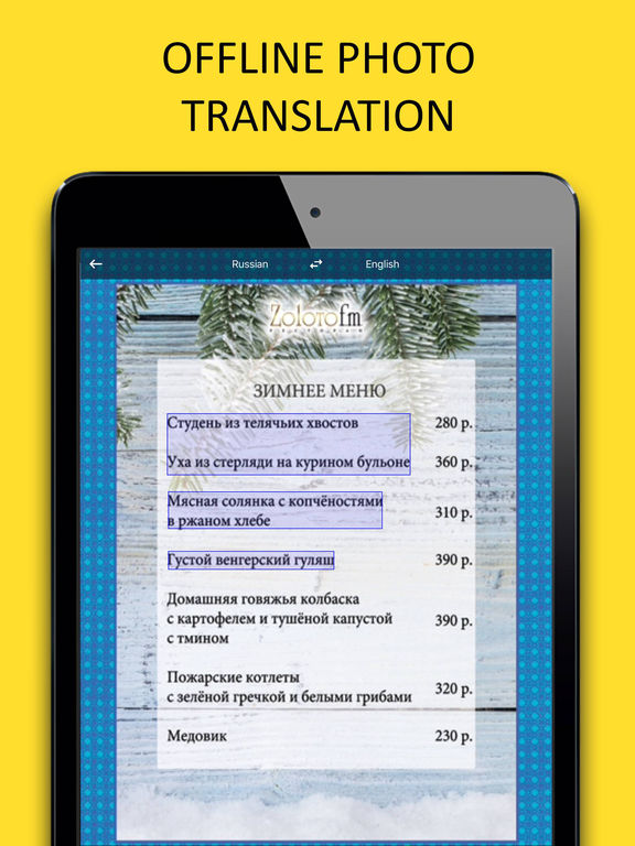 Russian Offline Text Translator and Dictionary Screenshots