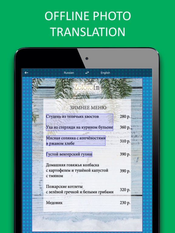 PROMT Translator Russian-English offline Screenshots
