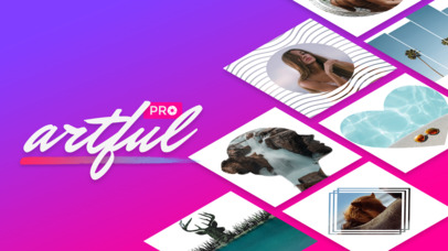 Price Drop: Artful Pro  (Photography)