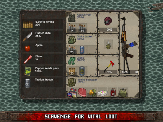 Image of Mini DAYZ - Survival Game for iPad