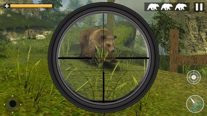 Bear Jungle Attack screenshot