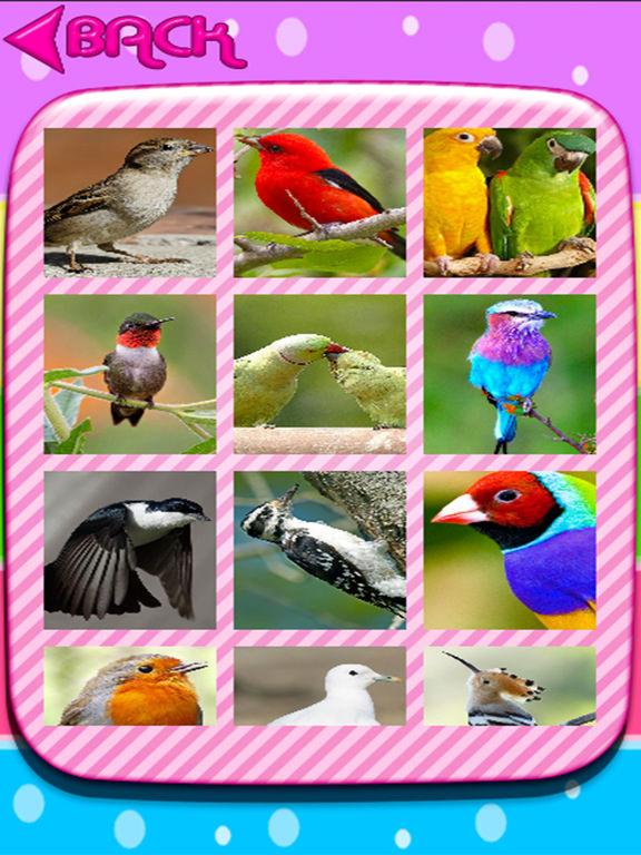 birds puzzle jigsaw screenshot 5