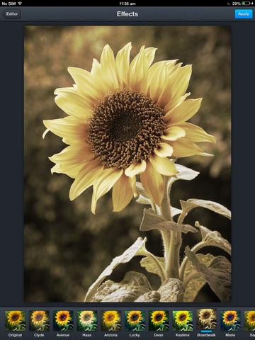 Take Beautiful Photos Screenshots