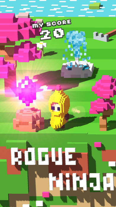 Rogue Ninja Screenshots