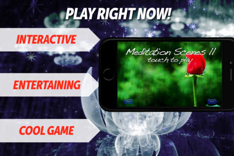 Meditation Scenes II - Video Relax Pack screenshot 1
