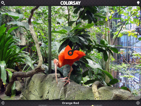 ColorSay – Hear the world in color! Screenshots