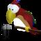 Cocorito.60x60 50 2014年7月25日Macアプリセール ビデオプレイヤー「Media Room」が無料!