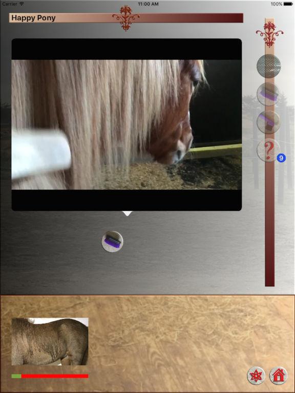 Happy Pony by Horse Reader screenshot 2