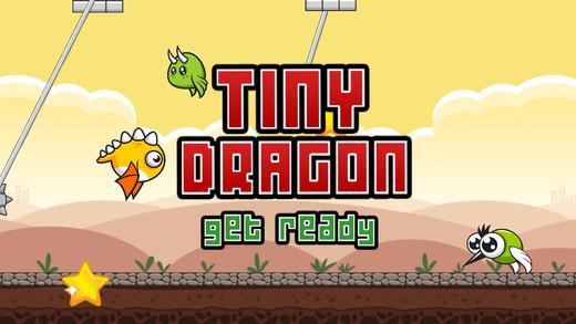 Tiny Dragon Devil Night Wings Remnants