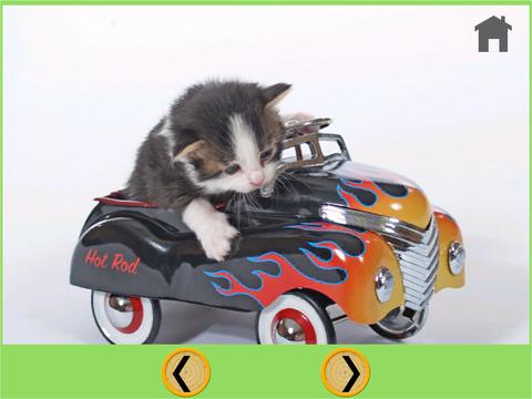 cats bowling for kids iPad Screenshot 5
