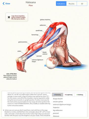 Yoga Anatomy Pro Learn The Anatomy Behind The Asanas Of Hatha Yoga