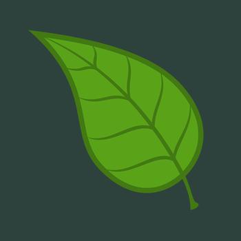 Treefingers 娛樂 App LOGO-硬是要APP