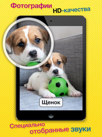 Звуки животных, транспорта, музыкальных инструментов и многое другое в Smart Baby Touch HD - развивающие карточки для детей