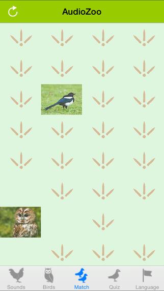 AudioZoo: Bird Songs iPhone Screenshot 4