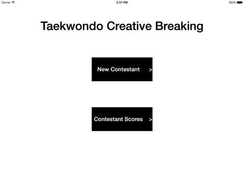 Taekwondo Creative Breaking