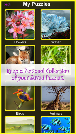 Nature Activity Jigsaw Rules Threes-Puzzl Educational 3D Puzzle Game for boys Girls