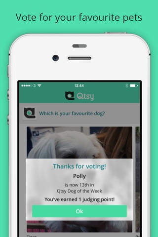 Qtsy: Pet Show in Your Pocket screenshot 1