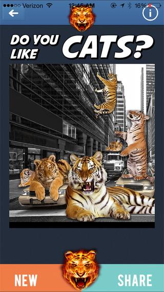 玩免費攝影APP|下載Tiger Sticker Photo Editor PRO: Draw/Stamp Tigers Animal Prank app不用錢|硬是要APP