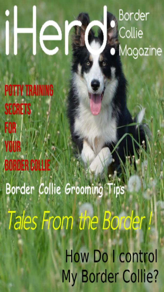 iHerd: Border Collie Lovers Magazine