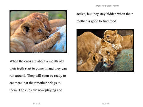 Lion Facts For Kids 9-12 by Cindy Bowdoin on iBooks