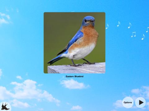 Chirp! Bird Songs Canada iPad Screenshot 4