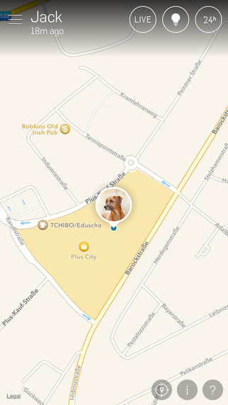 Tractive GPS Pet Finder - Never lose your dog again