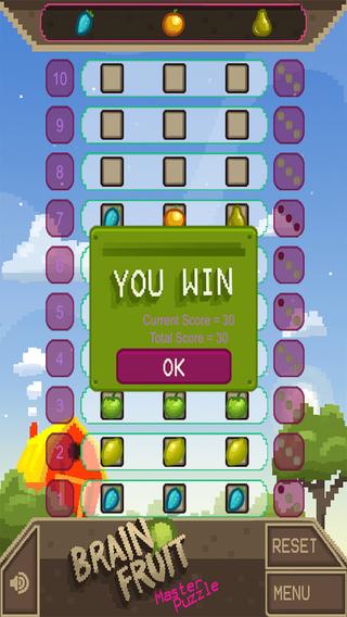 Brain Fruit Master Puzzle PRO