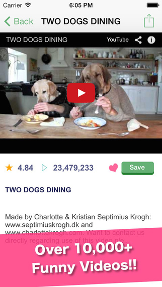 DogTube - dogs puppies video viewer