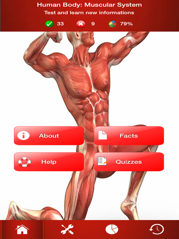 human body : muscular system trivia dans l'app store, Muscles