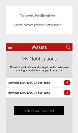 Assets Real Estate