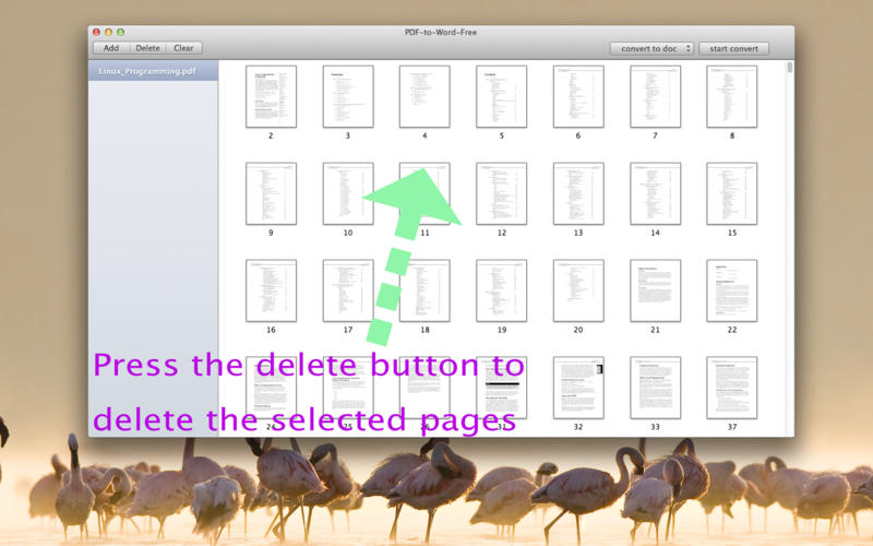 PDF-to-Word-Free Screenshot - 2