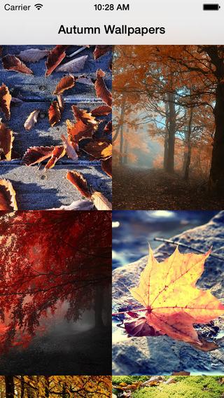 Autumn Wallpapers.