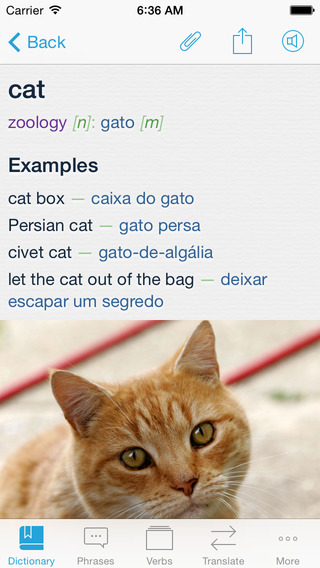 Portuguese Dictionary Translator +