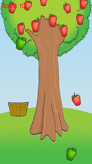 Apple Harvest - Fruit Farm