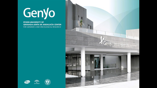 Genyo. Research groups and Scientific support units