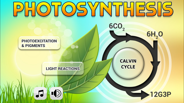FCS - Photosynthesis